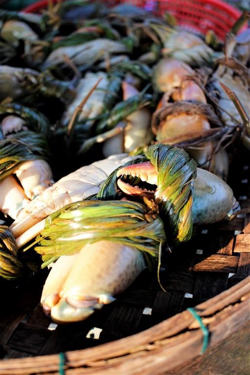 Les crabes à peine pêchés se retrouvent sur le marché à Hoi An.
